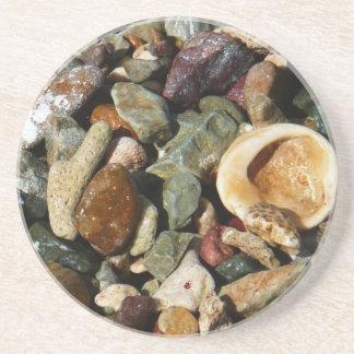 Muscheln, Felsen und korallenrotes Getränke Untersetzer