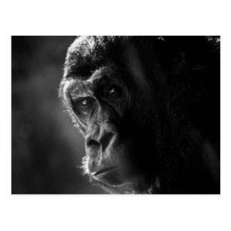 Mutter-Gorilla-Postkarte Postkarte