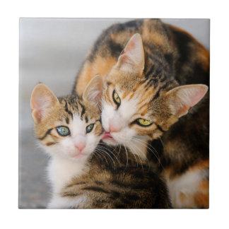 Mutter-Katzen-Liebe-niedliches Kätzchen, Keramik Kleine Quadratische Fliese