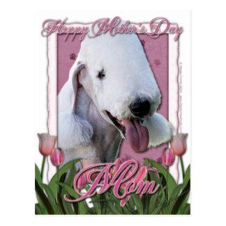 Mutter-Tag - rosa Tulpen - Bedlington Terrier Postkarte