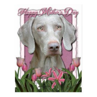 Mutter-Tag - rosa Tulpen - Weimaraner - Goldaugen Postkarte