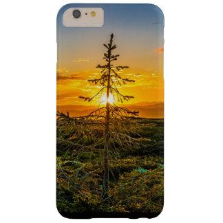 Mystischer Baum am Sonnenuntergang-Handy-Fall Barely There iPhone 6 Plus Hülle