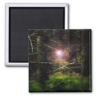 Mystischer Wald Kühlschrankmagnet