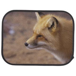 Na, Kanada. Roter Fox Autofußmatte