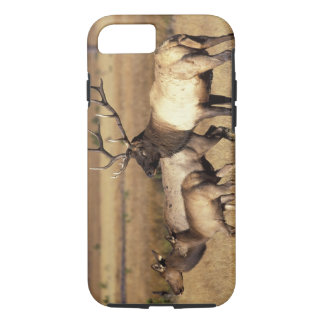 Na, Yellowstone Nationalpark USA, Wyoming, iPhone 8/7 Hülle