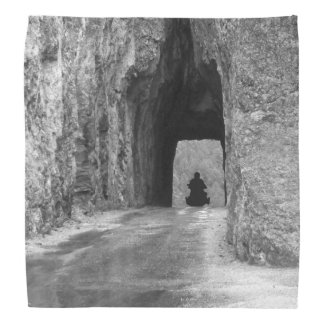 Nadel-Landstraßen-Tunnel Halstuch