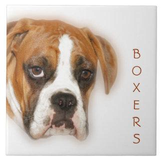 Nahaufnahme einer Boxer-Hundefliese Trivet Fliese