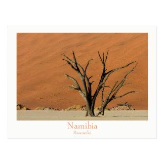 Namibia- - Sossusvleiwüstenpostkarte mit Text Postkarte