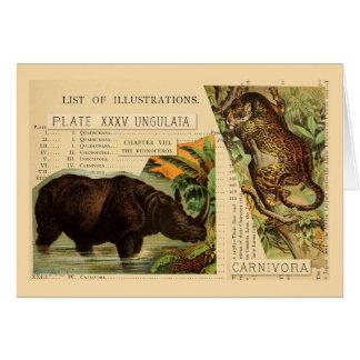 Nashorn-Jaguar-Tier-Illustrationen Karte