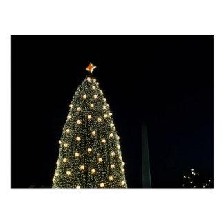 Nationaler Weihnachtsbaum u. Washington-Monument Postkarte