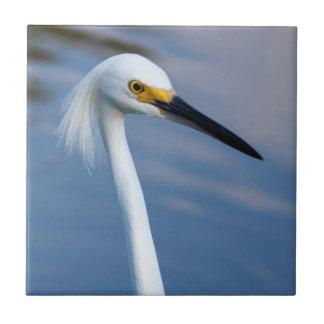 Nationalpark USA, Florida, Sumpfgebiete Keramikkachel