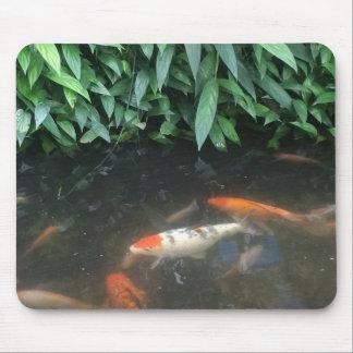 Natur coole Koi Fische in der Mauspads