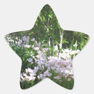 Natur-Foto-Blumen-New-Jersey Amerika NVN665 SPASS Stern-Aufkleber