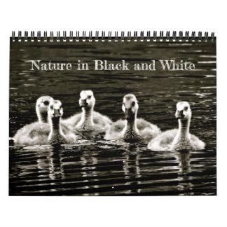 Natur in Schwarzweiss Abreißkalender