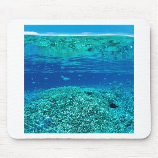 Natur-Ozean-Seesandwich Mousepads
