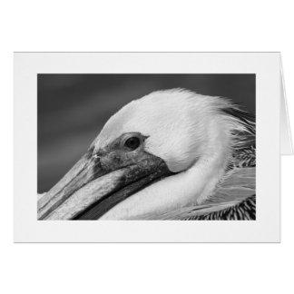 Natur-Vogel-Pelikan danken Ihnen denkend an Sie Karte