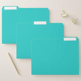 Natürlichen Robins Ei-Blau-Farbe Papiermappe
