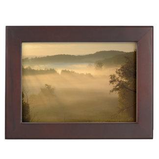 Nebel des frühen Morgens Erinnerungsdose
