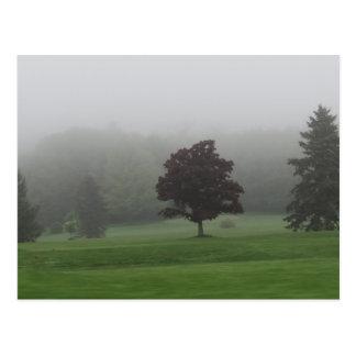 Nebel gefüllte Landschaft Postkarte
