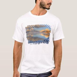 Nebel steigt vom See McDonald auf einem sehr T-Shirt