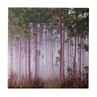 Nebel unter Kiefern am Sonnenaufgang, Sumpfgebiete Keramikfliese