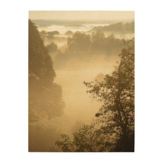 Nebelhafte ländliche Landschaft Holzdruck