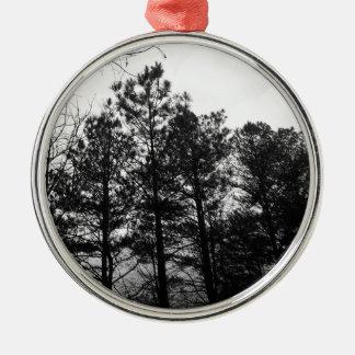 Nebelhafter ätherischer Spuk Baum-Waldholz-Nebel Rundes Silberfarbenes Ornament