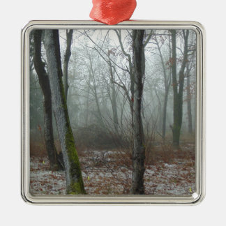 Nebelhaftes Holz Quadratisches Silberfarbenes Ornament
