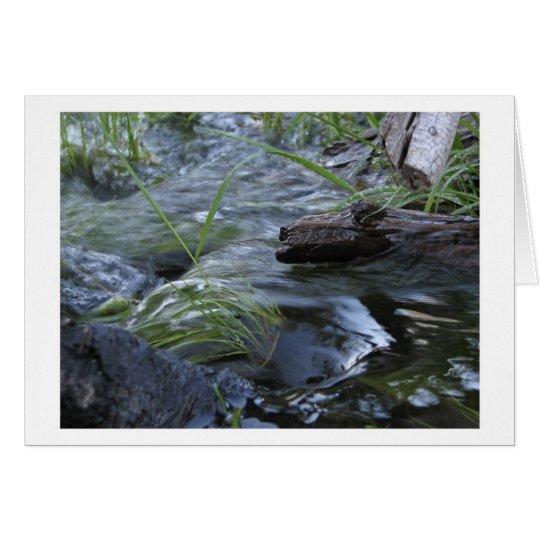 Nebenfluss zwischen Kibbie u. Flora Seen Grußkarte