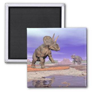 Nedoceratops/diceratops Dinosaurier in der Natur Quadratischer Magnet