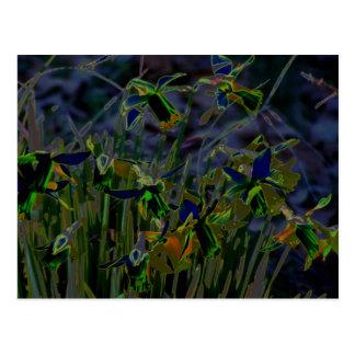 Neoneffekt-Narzissen Postkarte