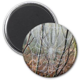 Netz des europäischen Garten-Spinnen-Magneten Runder Magnet 5,7 Cm