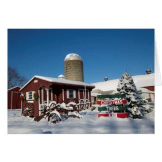 Neu-England Weihnachtsbäume Karte