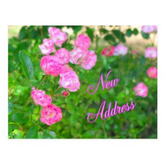 Neue Adresse Postkarte