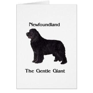 Neufundland-Hund der leichte Riese Karte