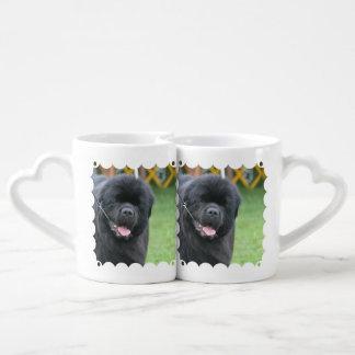 Neufundland-Hund Paartasse
