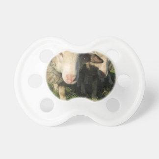Neugierige Schafe Schnuller