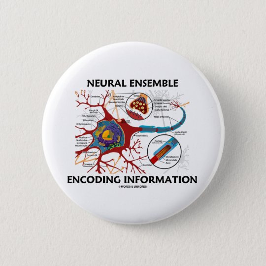 Neurale Ensemble-kodierungs-Informationen (Neuron) Runder Button 5,7 Cm