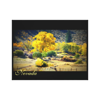 Nevada-Gold Leinwanddruck