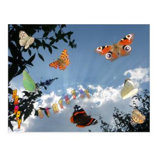 Niederländische Schmetterlings-alles- Gute zum Postkarte
