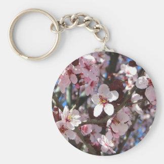 Niederlassung rosa des Blüten-Frühlings-blühenden Schlüsselanhänger