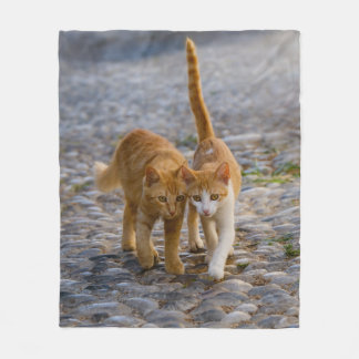 Niedliche Cuddly Katzen-Kätzchen-Freund-steiniges Fleecedecke