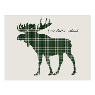 Niedliche die Kap-Breton-Insel Elche Postkarte