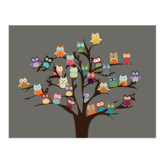 Niedliche Eule auf Hintergrund des Baum-  Postkarten