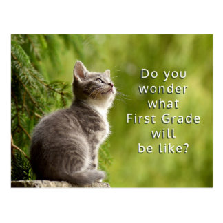 Niedliche Kätzchen-grundlegende Postkarte