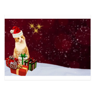 Niedliche Katzen-frohe Weihnacht-Grüße Postkarte