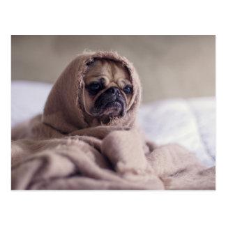 Niedliche Mops-Hundepostkarte Postkarte