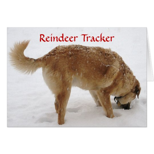 Niedliche Sankt- u. Ren-Suche u. Rettungs-Hund Grußkarte