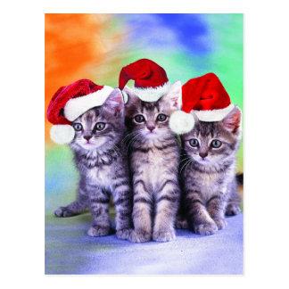 Niedliche Weihnachtskätzchen Postkarte