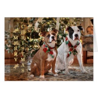 Niedliche Weihnachtsrettung Pitbull und Hund Karte